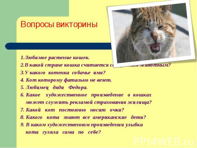 Вопросы викторины 1.Любимое растение кошек. 2.В какой стране кошка считается священным животным? 3.У какого котенка собачье имя? 4. Кот которому фатально не везет. 5. Любимец дяди Федора. 6. Какое художественное произведение о кошках может служить р…