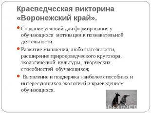 Краеведческая викторина «Воронежский край». Создание условий для формирования у
