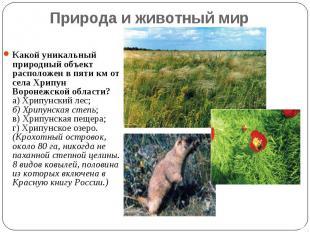 Природа и животный мир Какой уникальный природный объект расположен в пяти км от