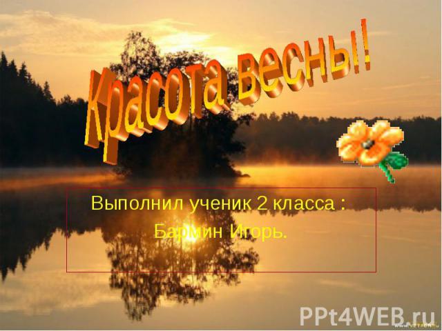 Красота весны! Выполнил ученик 2 класса : Бармин Игорь.