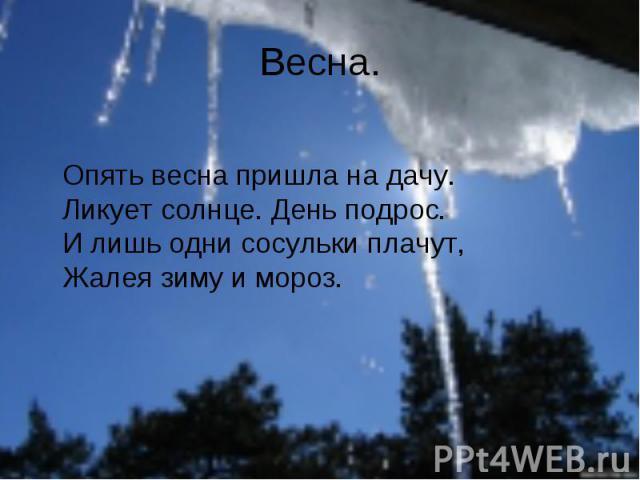 Весна. Опять весна пришла на дачу. Ликует солнце. День подрос. И лишь одни сосульки плачут, Жалея зиму и мороз.