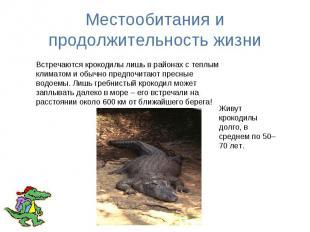 Местообитания и продолжительность жизни Встречаются крокодилы лишь в районах с т