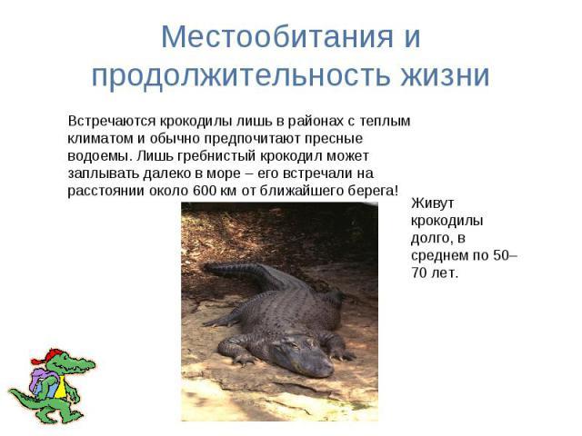 Местообитания и продолжительность жизни Встречаются крокодилы лишь в районах с теплым климатом и обычно предпочитают пресные водоемы. Лишь гребнистый крокодил может заплывать далеко в море – его встречали на расстоянии около 600 км от ближайшего бер…