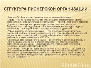 Структура пионерской организацииЗвено — 5-10 пионеров, руководитель — звеньевой