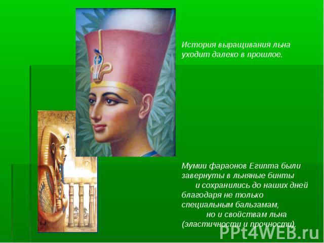 История выращивания льна уходит далеко в прошлое. Мумии фараонов Египта были завернуты в льняные бинты и сохранились до наших дней благодаря не только специальным бальзамам, но и свойствам льна (эластичности и прочности).