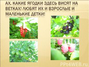 Ах, какие ягодки здесь висят на ветках! Любят их и взрослые и маленькие детки!