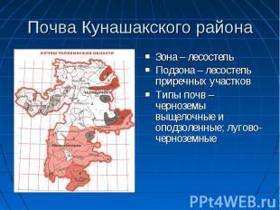 Почва Кунашакского района Зона – лесостепь Подзона – лесостепь приречных участко