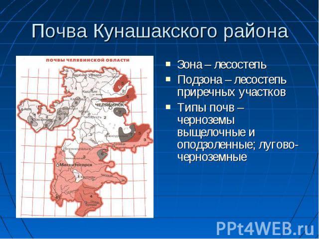 Почва Кунашакского района Зона – лесостепь Подзона – лесостепь приречных участков Типы почв – черноземы выщелочные и оподзоленные; лугово-черноземные