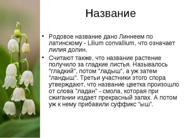 Название Родовое название дано Линнеем по латинскому - Lilium convallium, что означает лилия долин. Считают также, что название растение получило за гладкие листья. Называлось