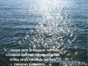 «…море все в белых пятнах, словно бесчисленные стаи птиц опустились на его синюю