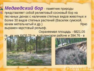 Медведский бор - памятник природы представляет собой реликтовый сосновый бор на