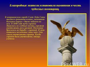 Благородные жители установили памятник в честь чудесных помощниц. В американском