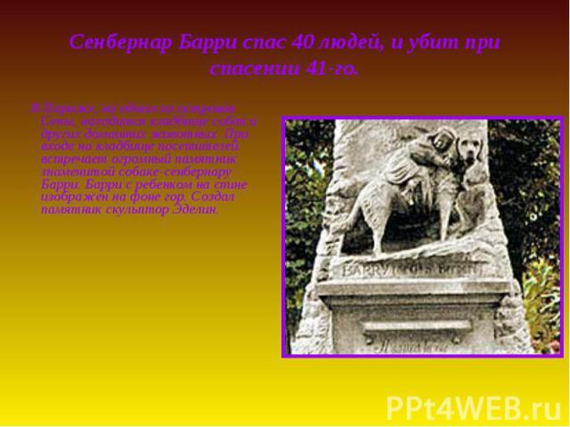 Сенбернар Барри спас 40 людей, и убит при спасении 41-го. В Париже, на одном из островов Сены, находится кладбище собак и других домашних животных. При входе на кладбище посетителей встречает огромный памятник знаменитой собаке-сенбернару Барри. Бар…