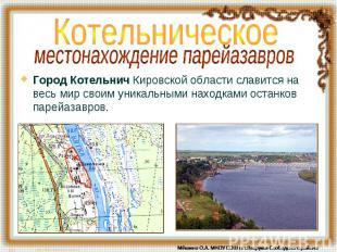 Котельническое местонахождение парейазавров Город Котельнич Кировской области сл