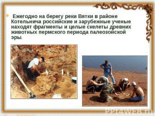 Ежегодно на берегу реки Вятки в районе Котельнича российские и зарубежные ученые