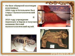 На базе обширной коллекции ископаемых в 1994 году в Котельниче был открыт палеон