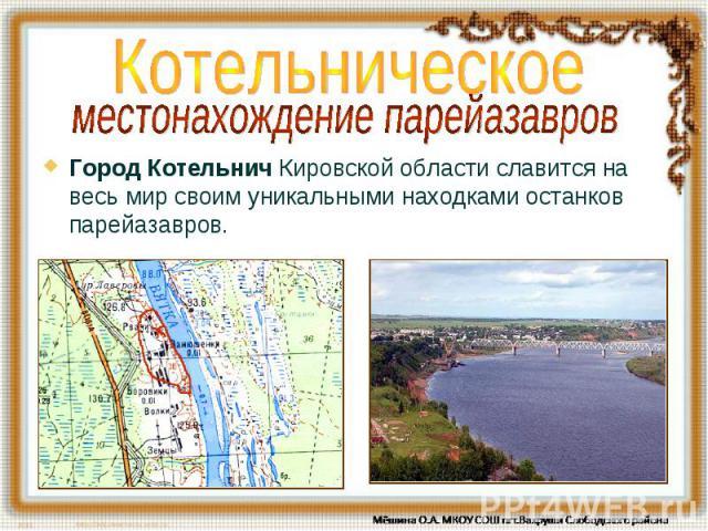 Котельническое местонахождение парейазавров Город Котельнич Кировской области славится на весь мир своим уникальными находками останков парейазавров.