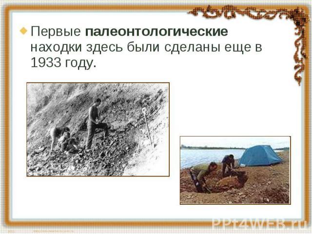 Первые палеонтологические находки здесь были сделаны еще в 1933 году.