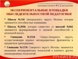 ЭКСПЕРИМЕНТАЛЬНЫЕ ПЛОЩАДКИ МЫСЛЕДЕЯТЕЛЬНОСТНОЙ ПЕДАГОГИКИ Школа №110 Центральног