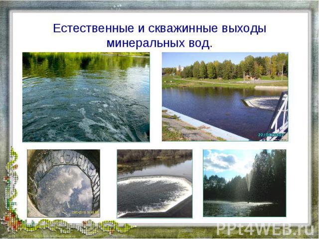 Естественные и скважинные выходы минеральных вод.