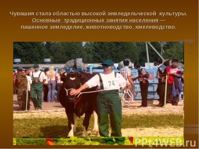 Чувашия стала областью высокой земледельческой культуры. Основные традиционные занятия населения — пашенное земледелие, животноводство, хмелеводство.