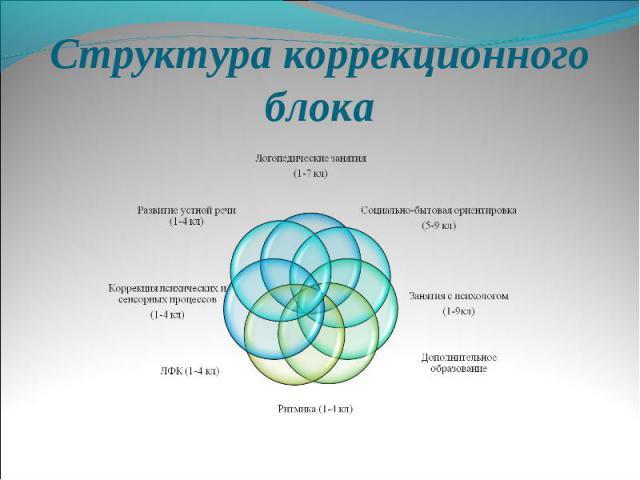 Структура коррекционного блока