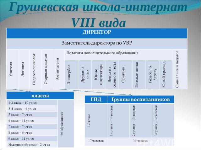 Грушевская школа-интернат VIII вида