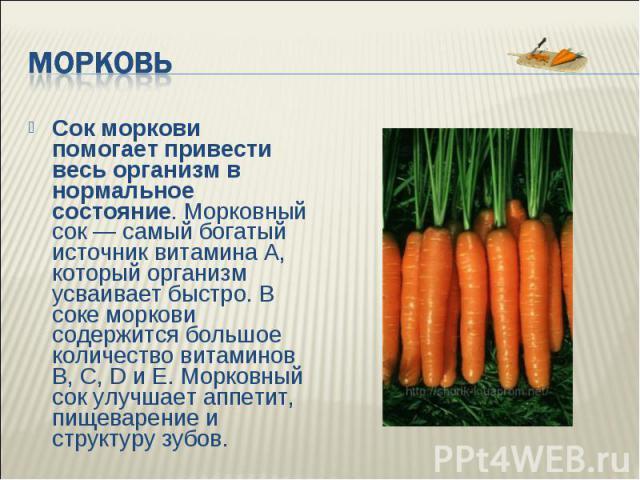Полезна ли вареная в молоке морковь