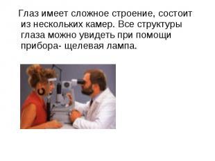 Глаз имеет сложное строение, состоит из нескольких камер. Все структуры глаза мо