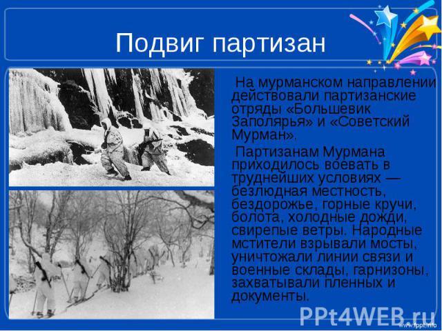 Подвиг партизан На мурманском направлении действовали партизанские отряды «Большевик Заполярья» и «Советский Мурман». Партизанам Мурмана приходилось воевать в труднейших условиях — безлюдная местность, бездорожье, горные кручи, болота, холодные дожд…