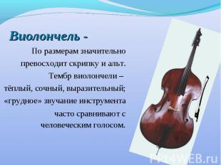 Виолончель - По размерам значительно превосходит скрипку и альт. Тембр виолончел