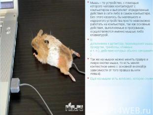 Мышь – то устройство, с помощью которого человек контактирует с компьютером и вы