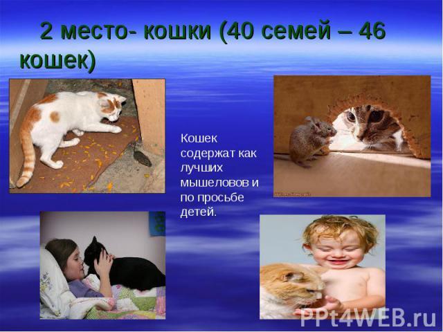 2 место- кошки (40 семей – 46 кошек) Кошек содержат как лучших мышеловов и по просьбе детей.