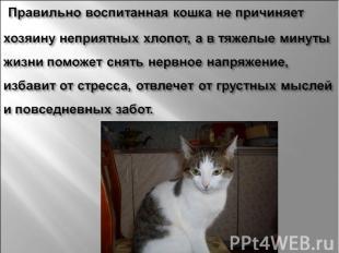 Правильно воспитанная кошка не причиняет хозяину неприятных хлопот, а в тяжелые