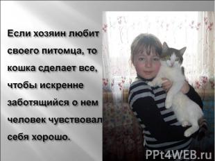 Если хозяин любит своего питомца, то кошка сделает все, чтобы искренне заботящий
