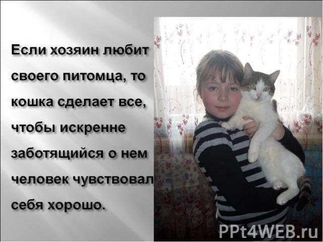 Если хозяин любит своего питомца, то кошка сделает все, чтобы искренне заботящийся о нем человек чувствовал себя хорошо.