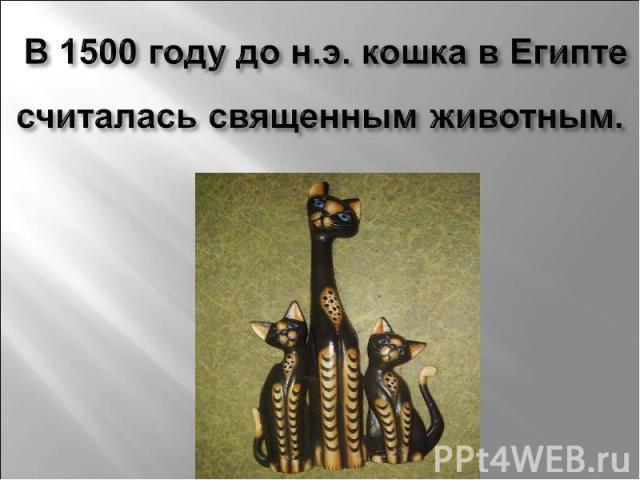 В 1500 году до н.э. кошка в Египте считалась священным животным.