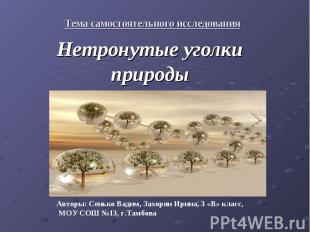 Тема самостоятельного исследования Нетронутые уголки природы Авторы: Сенько Вади
