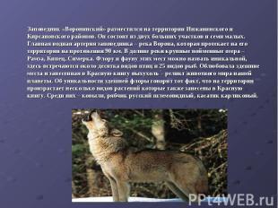 Заповедник «Воронинский» разместился на территории Инжавинского и Кирсановского