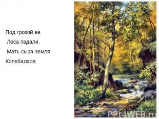 Под грозой ее Леса падали, Мать сыра-земля Колебалася,