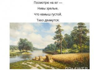 Посмотрю на юг — Нивы зрелые, Что камыш густой, Тихо движутся;