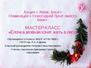 Акция « Живи, ёлка!» Номинация « Новогодний букет вместо ёлки» МАСТЕР-КЛАСС «Ёло