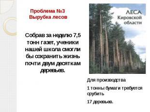 Проблема №3 Вырубка лесов Собрав за неделю 7,5 тонн газет, ученики нашей школа с