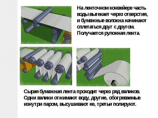 На ленточном конвейере часть воды вытекает через отверстия, и бумажные волокна начинают сплетаться друг с другом. Получается рулонная лента. Сырая бумажная лента проходит через ряд валиков. Одни валики отжимают воду, другие, обогреваемые изнутри пар…