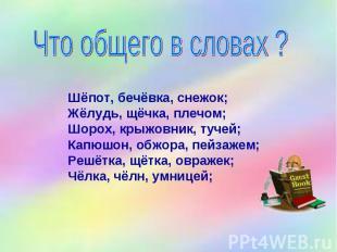 Что общего в словах ? Шёпот, бечёвка, снежок; Жёлудь, щёчка, плечом; Шорох, крыж