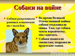 Собаки на войне Собаки разыскивали раненых и выносили их с поля боя. Во время Ве