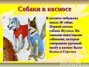 Собаки в космосе В космосе побывало около 30 собак. Первой летала собака Жулька.