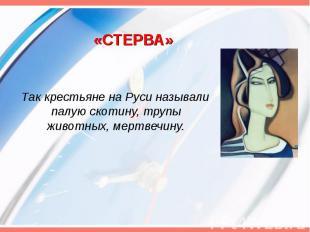 «СТЕРВА» Так крестьяне на Руси называли палую скотину, трупы животных, мертвечин