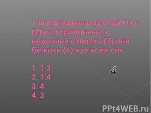 Выпачканные землей (1) и (2) исцарапанные в недавней схватке (3) они бежали (4)