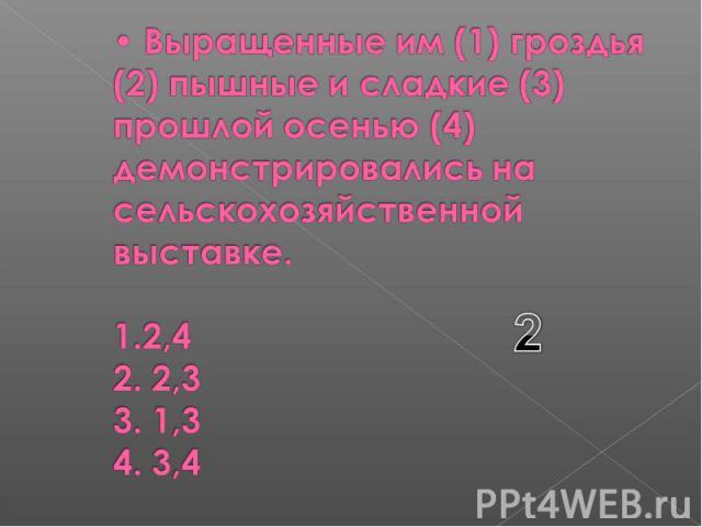 Выращенные им (1) гроздья (2) пышные и сладкие (3) прошлой осенью (4) демонстрировались на сельскохозяйственной выставке. 1.2,4 2. 2,3 3. 1,3 4. 3,4